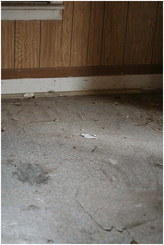 Hidden Hardwood Floors